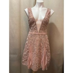 BCBGMAXAZRIA Phoebe Embroidered Tulle Dress Size 2